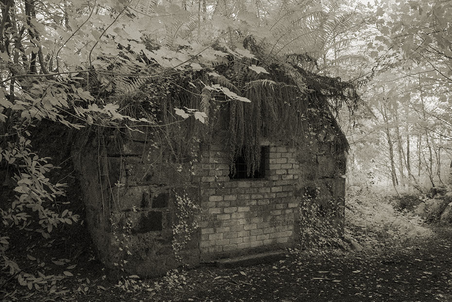 Castlewellan Ice House