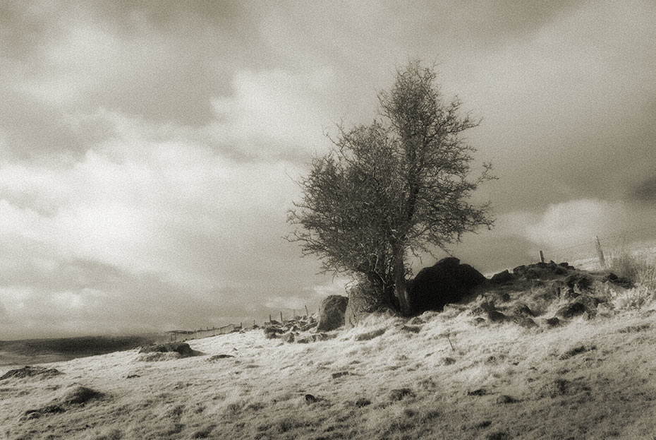 The Hanging Thorn Cairn, Ballyutoag