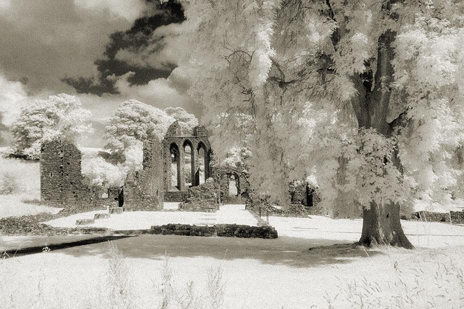 Inch Abbey Cistercian monastery ruin