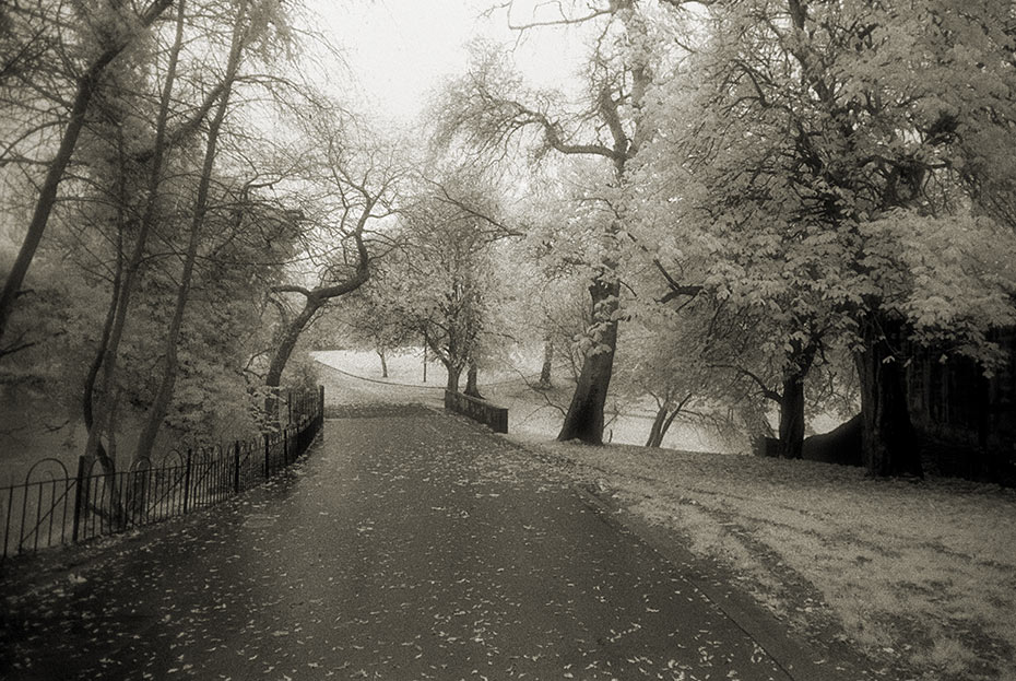 Alexandra Park, Belfast