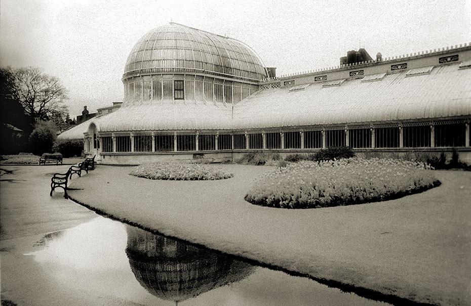 Belfast Palm House