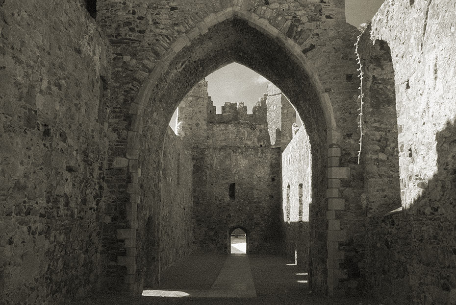 Carlingford Abbey (Dominican Friary)