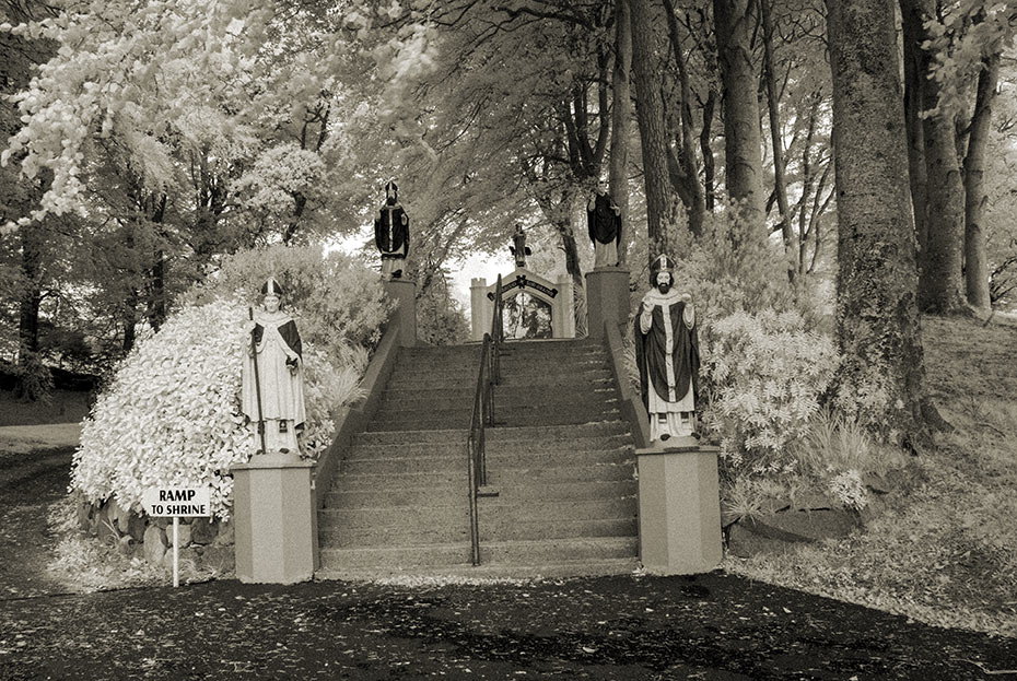 Steps to St Brigid's Shrine