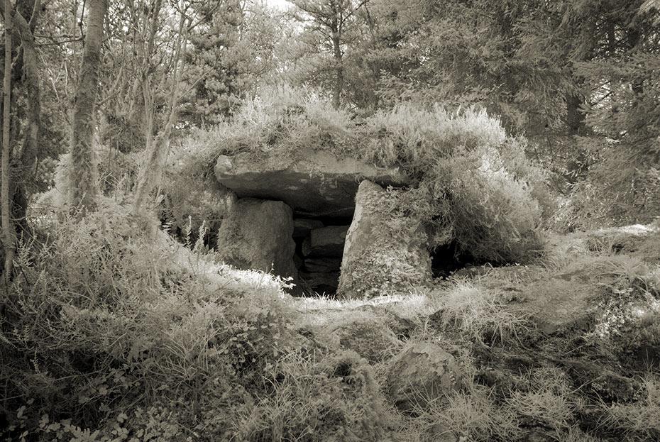Cavan Burren - Portal Tomb