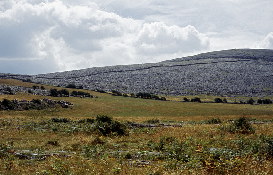 The Burren , County Clare