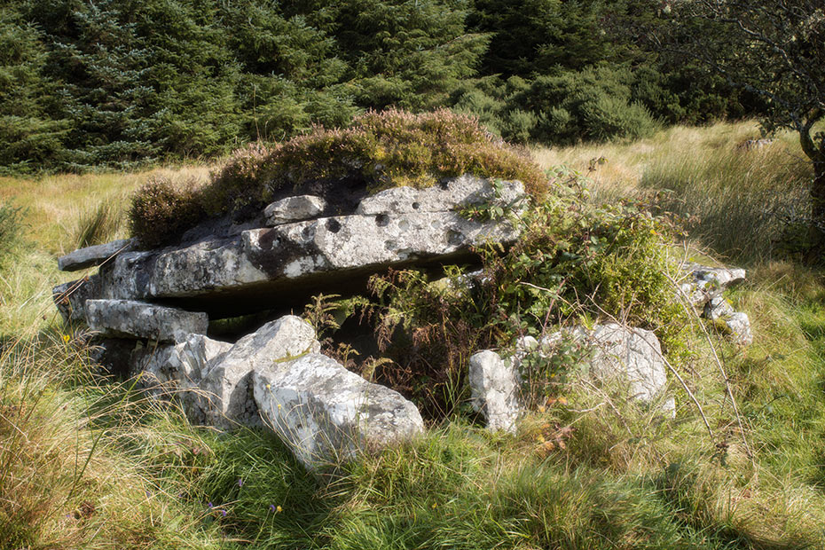 Casheltown Wedge Tomb