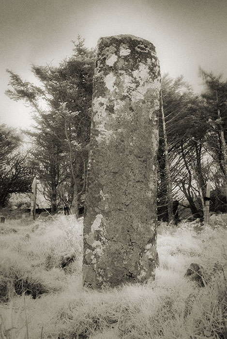 Cool East Ogham Stone