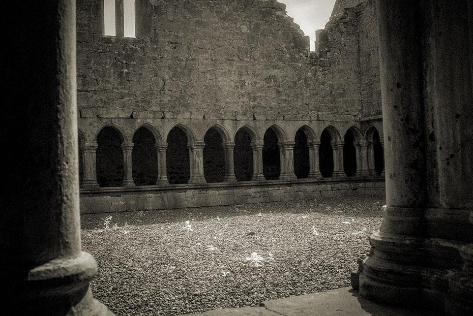 Askeaton Franciscan Friary Cloister